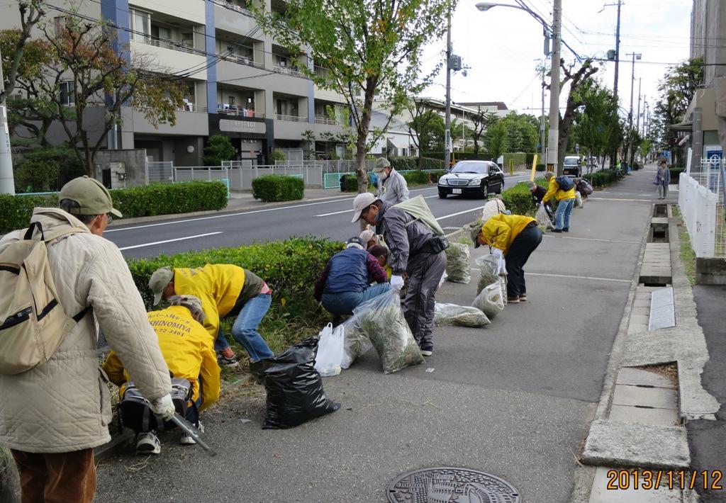 清掃ボランティア06 11月12日山手幹線清掃ボランティア雑草の中に小さなゴミが 11月12日.